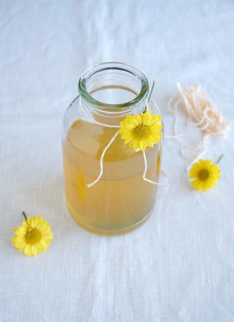 Homemade limoncello / Limoncello caseiro