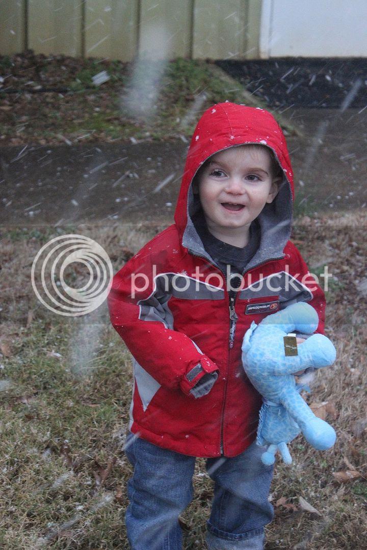 photo snow2_zps33dc5dd7.jpg