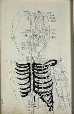 Japanese rare book acupuncture schematic