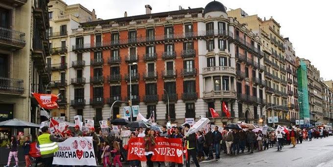 VII Marcha por la Vida en España