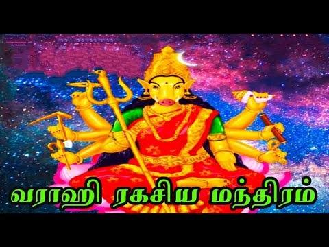 வராகி அம்மனின் மந்திர ரகசியங்கள்#varahiamman#வராஹி#வராகி#வராகிமூலமந்திரம்