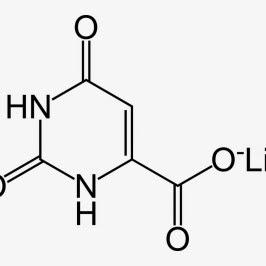 Nutrivene Piracetam 800 mg 60 vcaps Review for Sale Online ...