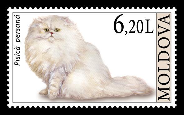 pers (perzische kat) op moldavische postzegel