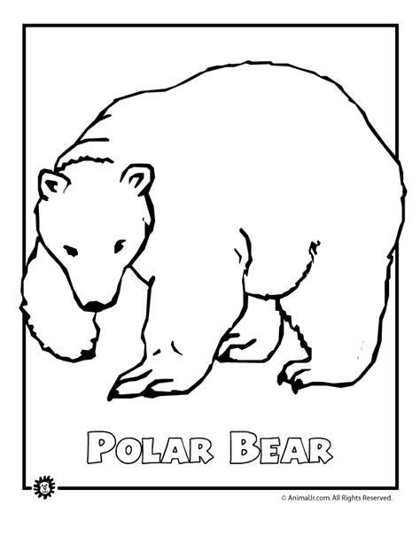 endangered polar bear woo jr kids activities