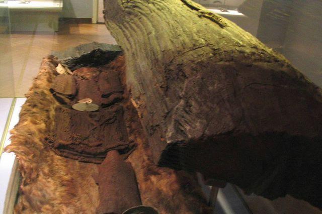La jeune femme reposait dans un tronc de chêne évidé, enroulée dans une peau de bœuf.