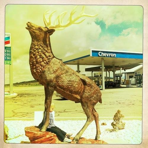 Fillmore - Chevron Deer