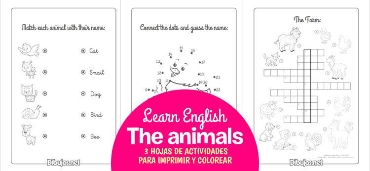 3 Hojas De Actividades Para Aprender Los Animales En Ingles