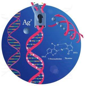 Além da biônica: DNA agora pode ter íons metálicos