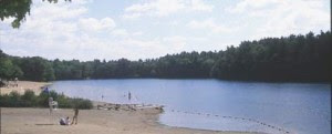 Houghton's Pond from website