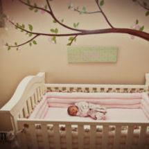 Pink And Brown Nursery Ideas Homewood Nursery