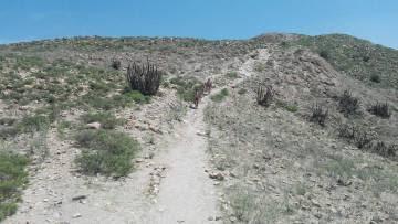 Primera caminata nudista en la región de Arequipa, en Perú.