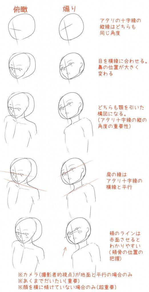 顔のアタリ十字線の役割を考える 色弱でもイラストは描けるのか