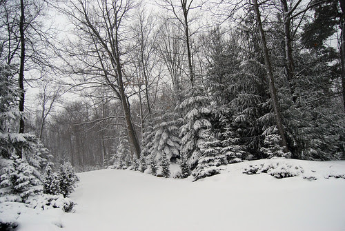 ..........Snow