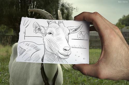 4529741606 6c1b5c0b22 in Incredibly Creative Pencil Drawings vs Photography