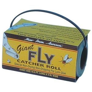 Fly Catchers