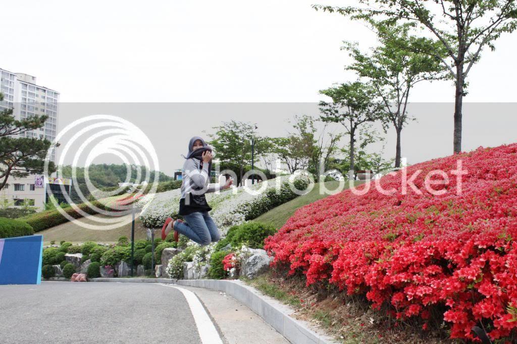 photo IMG_1609-edit.jpg