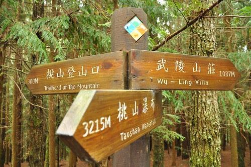 武陵四秀-往桃山登山口