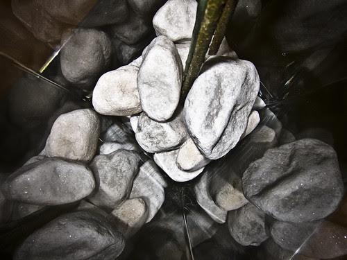 314/365 Piedras y reflejos por Juan R. Velasco