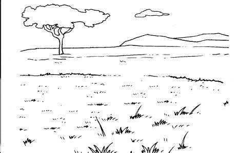 animal habitats coloring pages   safari pinterest