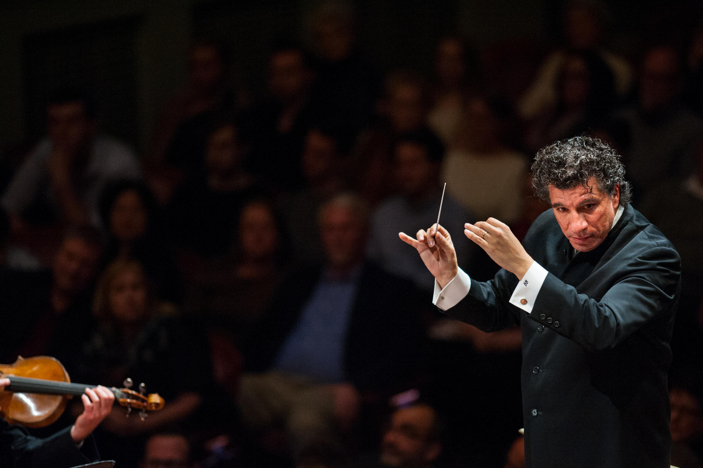Nashville Symphony Conductor Adds New Job With Polish ...