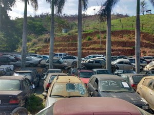 Veículos serão leiloados no próximo sábado (29) (Foto: André Oliveira / Arquivo Pessoal )
