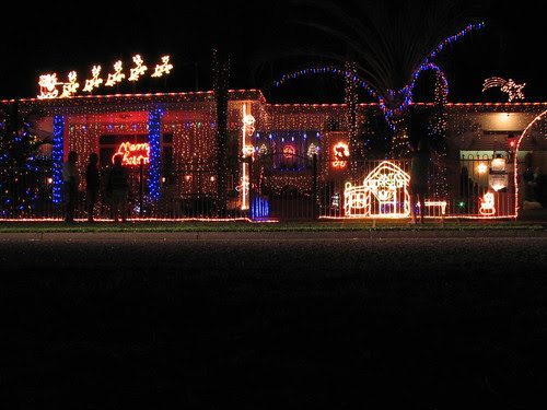 Christmas lights - Darwin winner