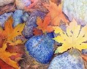 Autumn Leaves and Rocks Giclee Print - sherryroper
