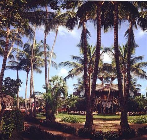 28 best Barcelo Bavaro Palace Deluxe   Punta Cana