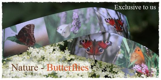 nature collection - butterflies