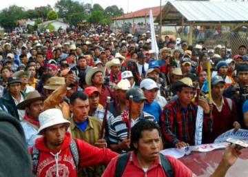 Campesinos contra multinacionales