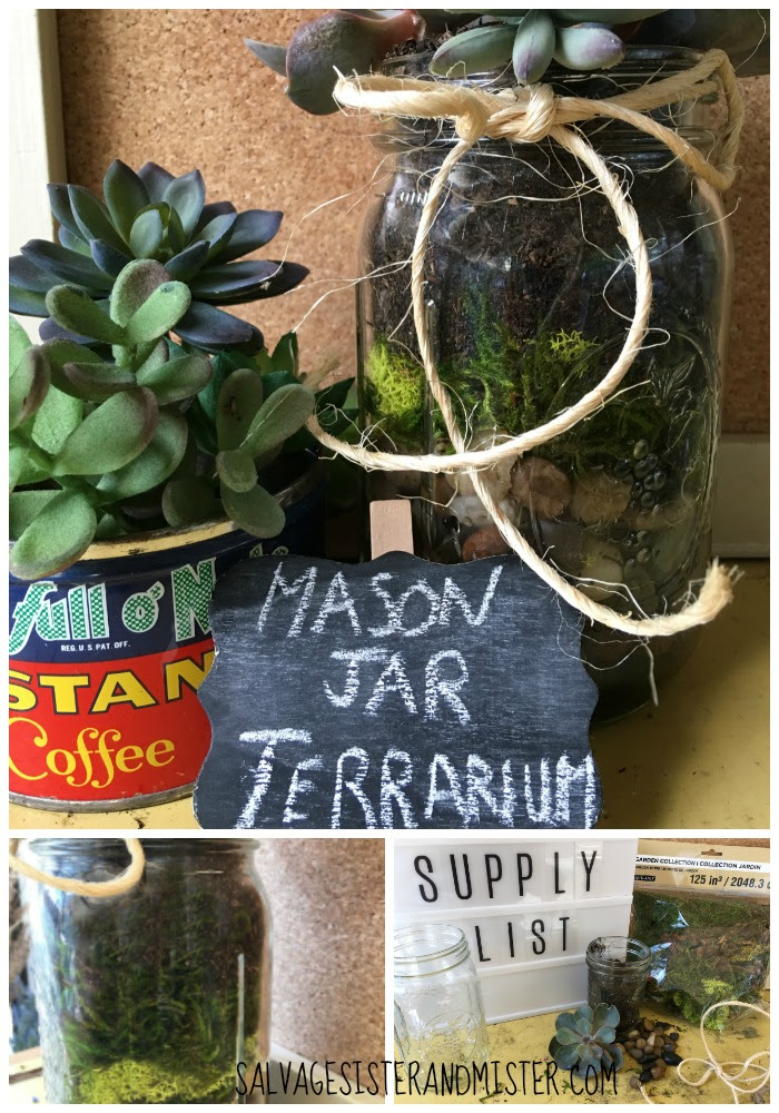 A mason jar terrarium is not only an inexpensive home decor item but it's also a great way to upcycle common items lying around. This DIY project is super simple to make and easy to care for. These also make great party or hostess gifts.