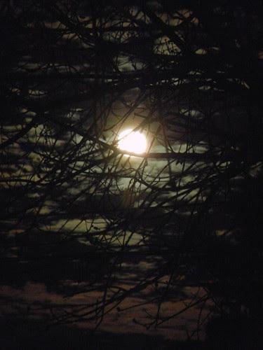 DSCN0150 _ Moon Rise, December 2013