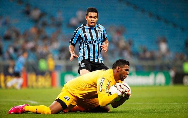 Grêmio x Santos - aranha (Foto: Marcos Ribolli)