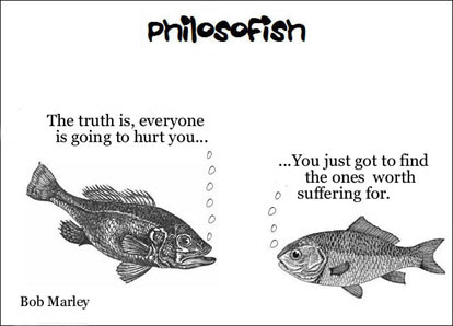 philosofish 38 small