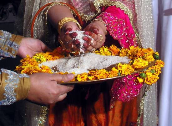 Bride taking the rice to throw back.    This is done three times.