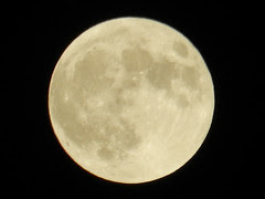 Moon (cropped)