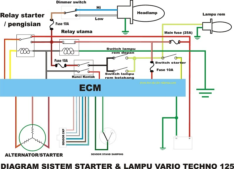 Wiring diagram lampu sein cheapraybanclubmaster Image collections
