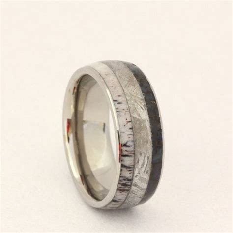 Titanium Ring with Gibeon Meteorite, Dinosaur Bone and