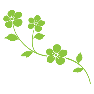 花飾り2 花植物イラスト Flode Illustration フロデイラスト