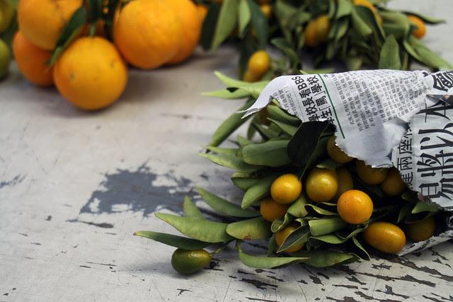 citrus12