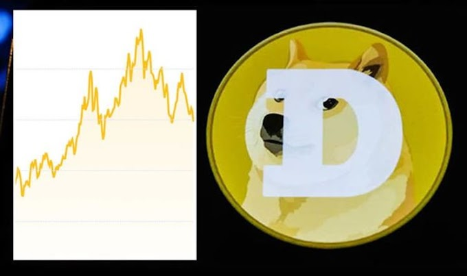 How high will dogecoin go? Experts pinpoint future for digital coin performance