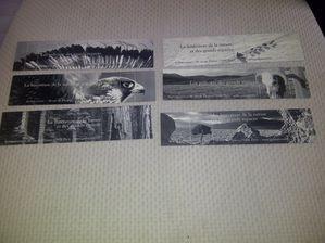 Villars-20120530-00181.jpg
