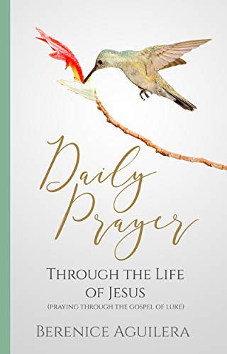 Praying Through the Gospel of Luke: A Book of Devotional Prayers
