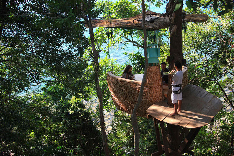 Luxurious Restaurant at the Treetop