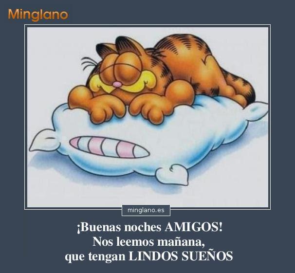 Frases De Feliz Noche Amigos