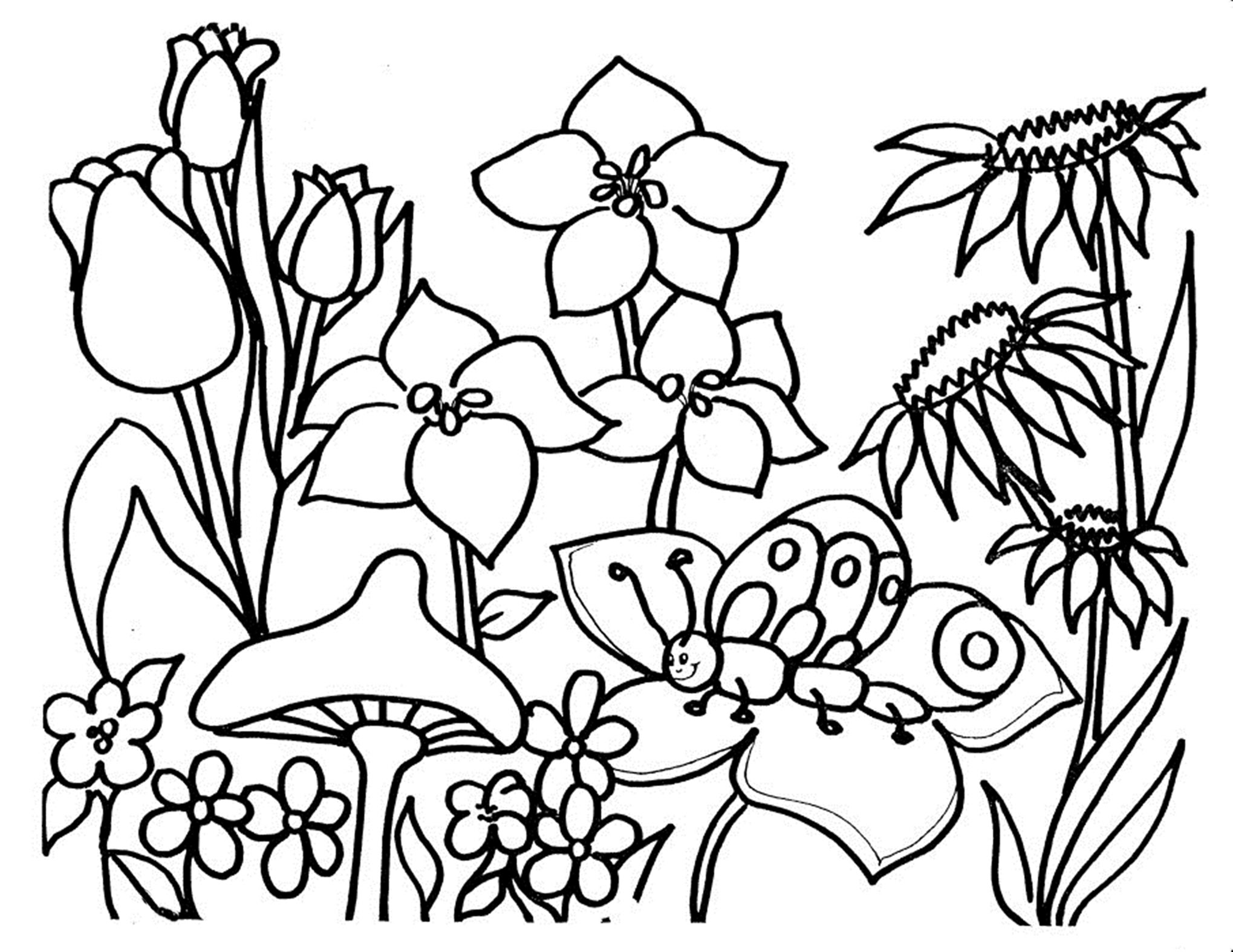 pictures for coloring flowers