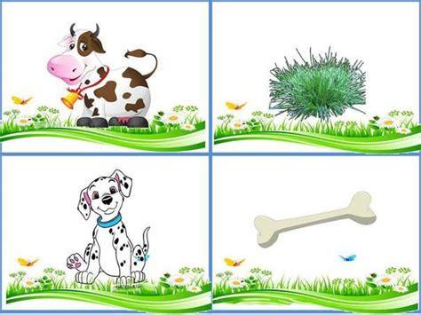 hangi hayvan ne yer okul ev etkinlikleri okul ev