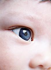Iris  Irish Eyes