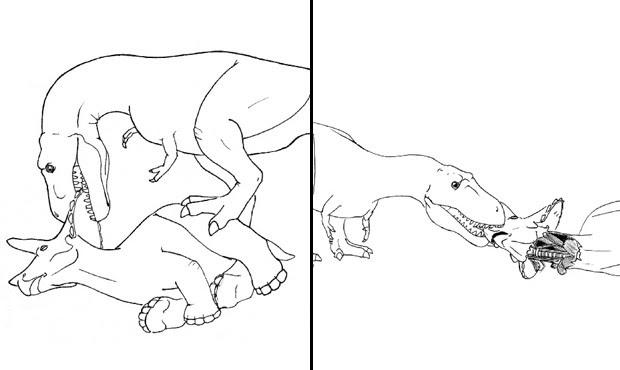 Imagens mostram como tiranossauro arrancava cabeça de triceratops  (Foto: Divulgação/Nate Carroll/Denver Fowler)