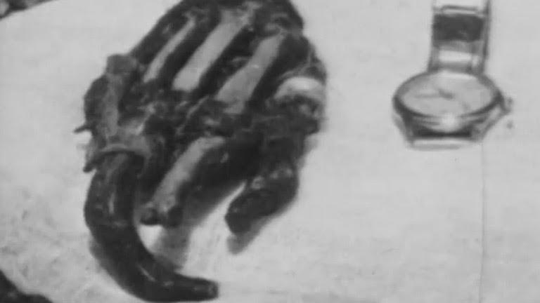 Más allá - El yeti y otros mitos